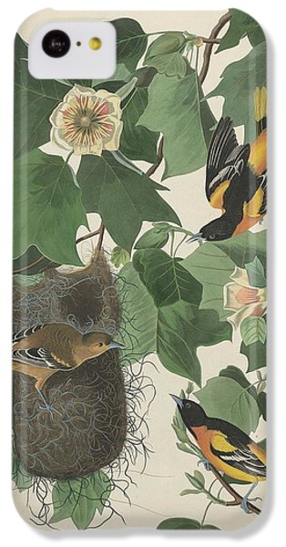 Baltimore Oriole IPhone 5c Case by Dreyer Wildlife Print Collections