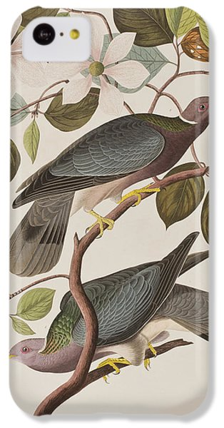 Band-tailed Pigeon  IPhone 5c Case by John James Audubon