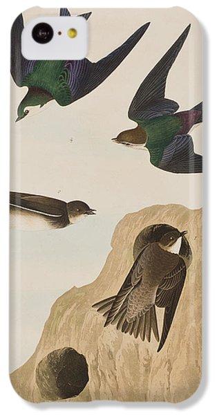 Bank Swallows IPhone 5c Case by John James Audubon