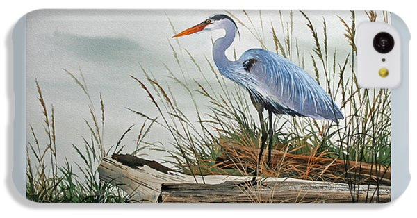 Beautiful Heron Shore IPhone 5c Case