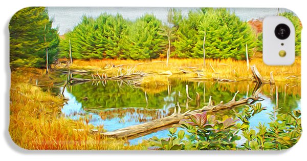 Beaver iPhone 5c Case - Beaver Pond by Laura D Young