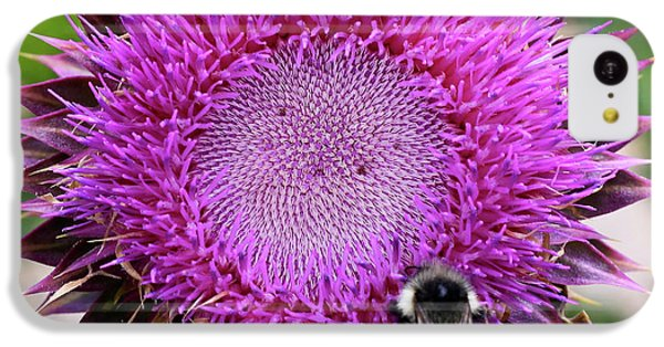 Bee On Thistle IPhone 5c Case