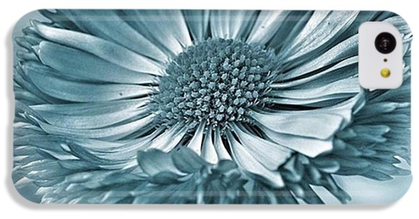 Bellis In Cyan  #flower #flowers IPhone 5c Case by John Edwards