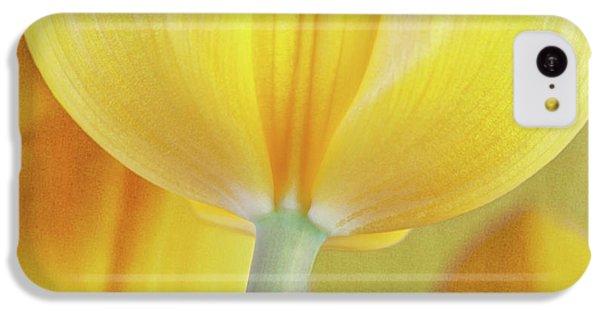 Beneath The Yellow Tulip IPhone 5c Case by Tom Mc Nemar