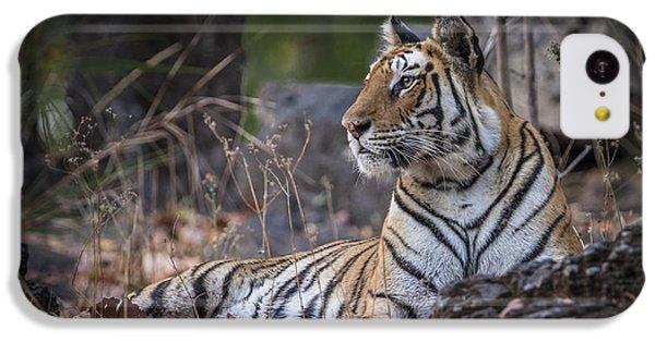 Bengal Tiger IPhone 5c Case by Hitendra SINKAR