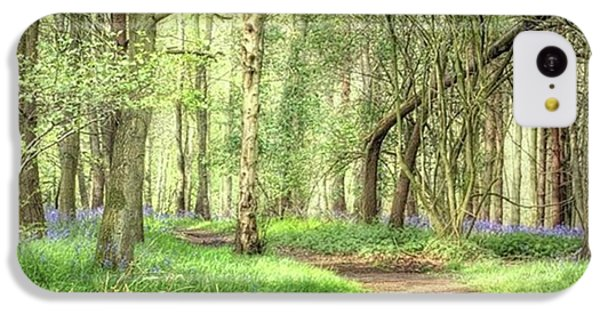 Bentley Woods, Warwickshire #landscape IPhone 5c Case