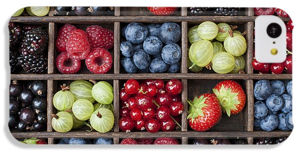 Berry Harvest IPhone 5c Case by Tim Gainey