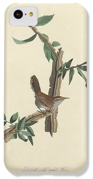 Bewick's Long-tailed Wren IPhone 5c Case