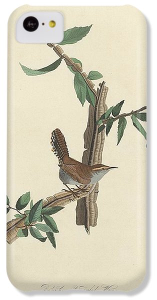 Bewick's Long-tailed Wren IPhone 5c Case by Anton Oreshkin