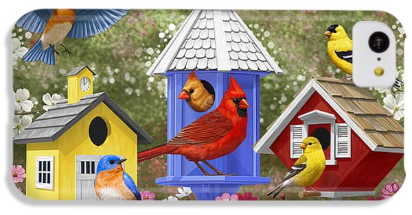 Bird Painting - Primary Colors IPhone 5c Case by Crista Forest