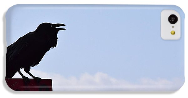 Crow Profile IPhone 5c Case by Sandy Taylor