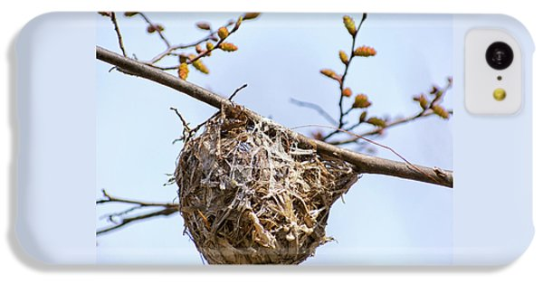 Birds Nest IPhone 5c Case by Christina Rollo