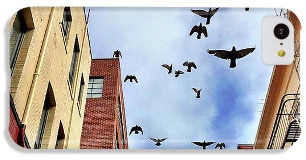 Birds Overhead IPhone 5c Case