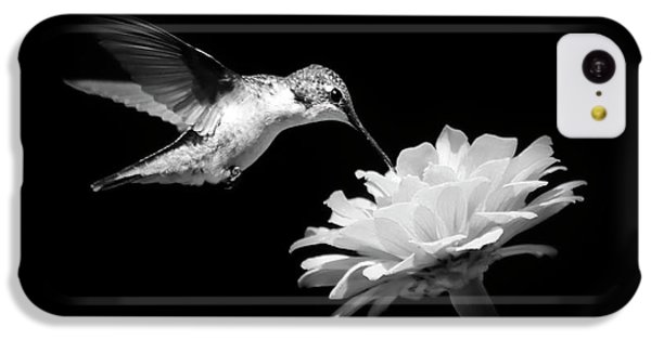 Black And White Hummingbird And Flower IPhone 5c Case by Christina Rollo