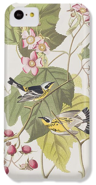 Black And Yellow Warblers IPhone 5c Case by John James Audubon