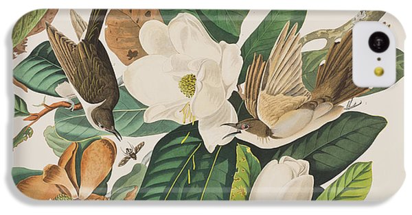 Cuckoo iPhone 5c Case - Black Billed Cuckoo by John James Audubon