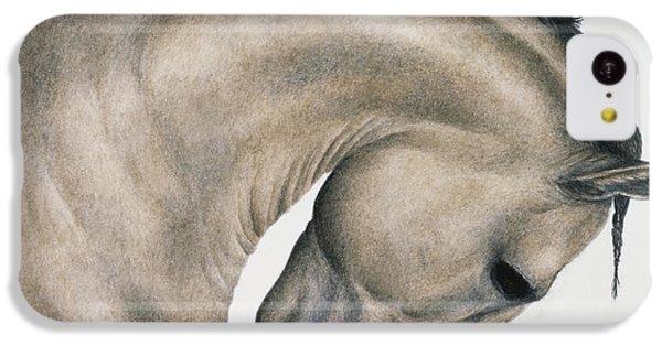 Horse iPhone 5c Case - Black Braid by Pat Erickson