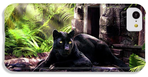 Black Panther Custodian Of Ancient Temple Ruins  IPhone 5c Case