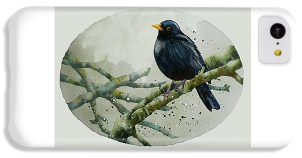 Blackbird Painting IPhone 5c Case by Alison Fennell