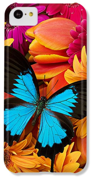 Blue Butterfly On Brightly Colored Flowers IPhone 5c Case by Garry Gay