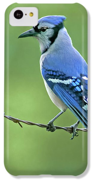 Bluejay iPhone 5c Case - Blue Jay On The Fence by Robert Frederick