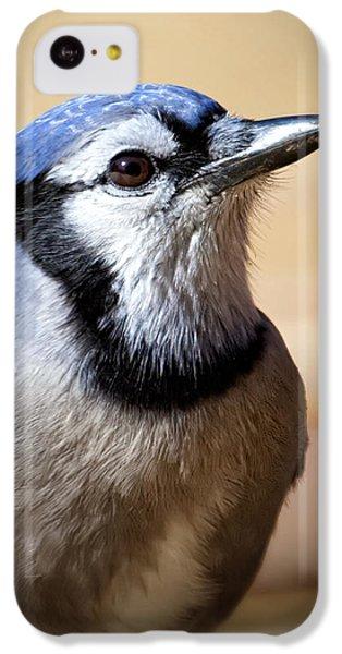 Bluejay iPhone 5c Case - Blue Jay Portrait by Al  Mueller