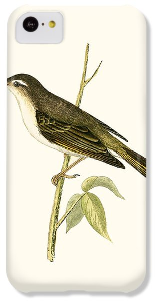 Bonelli's Warbler IPhone 5c Case by English School