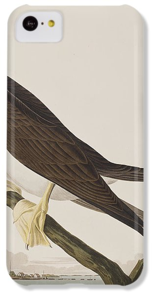 Booby Gannet   IPhone 5c Case by John James Audubon