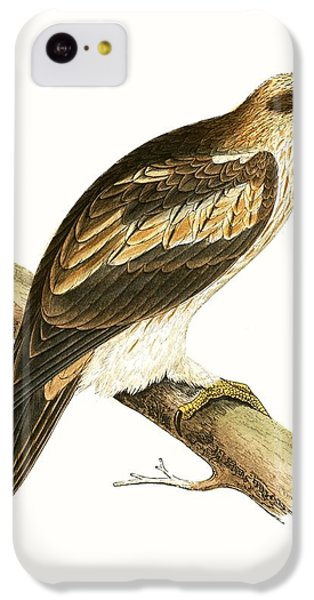 Booted Eagle IPhone 5c Case by English School
