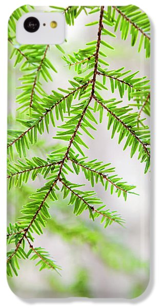 IPhone 5c Case featuring the photograph Botanical Abstract by Christina Rollo