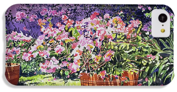 Beverly Hills iPhone 5c Case -  Bougainvillea Flower Pots Beverly Hills by David Lloyd Glover