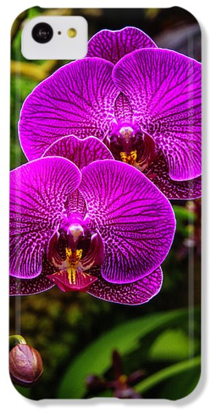 Bright Purple Orchids IPhone 5c Case by Garry Gay