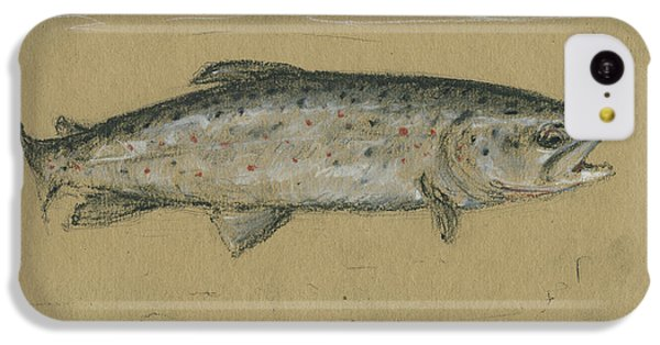 Trout iPhone 5c Case - Brown Trout by Juan Bosco