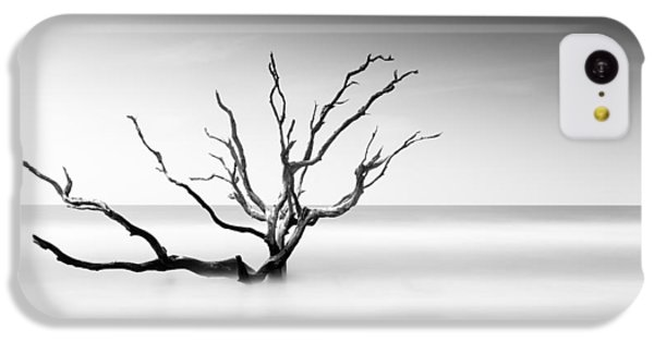 Bull iPhone 5c Case - Boneyard Beach Vi by Ivo Kerssemakers