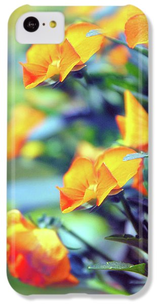 IPhone 5c Case featuring the photograph Buttercups by Jessica Jenney