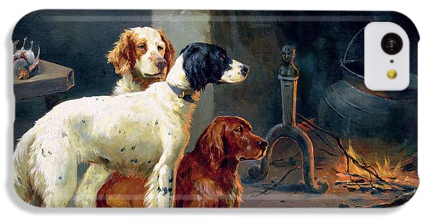 Pheasant iPhone 5c Case - By The Fire by Alfred Duke