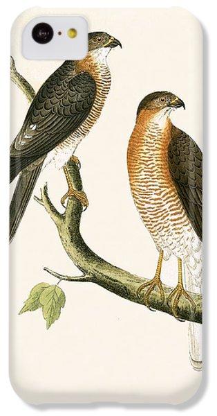 Calcutta Sparrow Hawk IPhone 5c Case