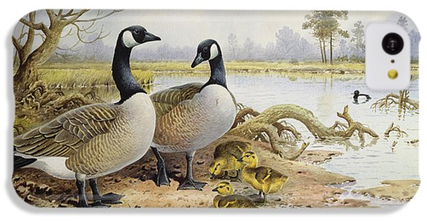 Canada Geese IPhone 5c Case