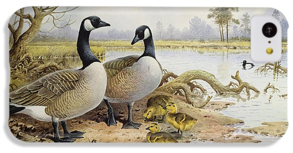 Canada Geese IPhone 5c Case by Carl Donner
