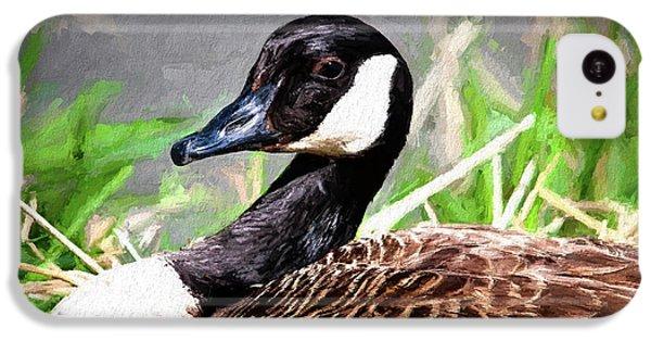 Goose iPhone 5c Case - Canadian Goose by Tom Mc Nemar