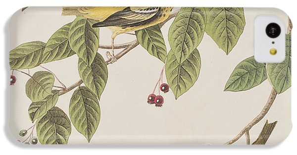 Carbonated Warbler IPhone 5c Case by John James Audubon