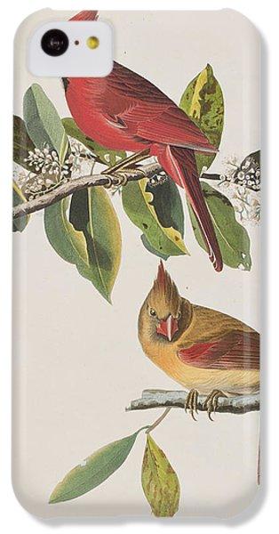 Cardinal Grosbeak IPhone 5c Case by John James Audubon