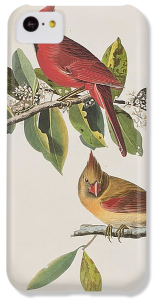 Cardinal Grosbeak IPhone 5c Case by John James Audubon