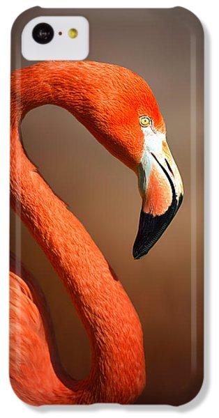 Flamingo iPhone 5c Case - Caribean Flamingo Portrait by Johan Swanepoel