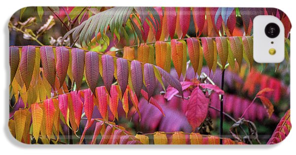 IPhone 5c Case featuring the photograph Carnival Of Autumn Color by Bill Pevlor