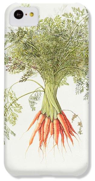 Carrots IPhone 5c Case