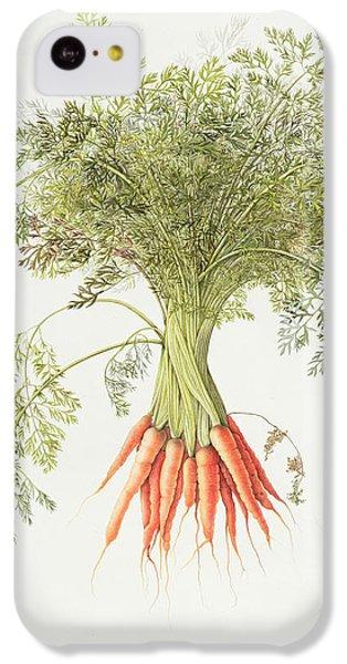 Carrots IPhone 5c Case by Margaret Ann Eden