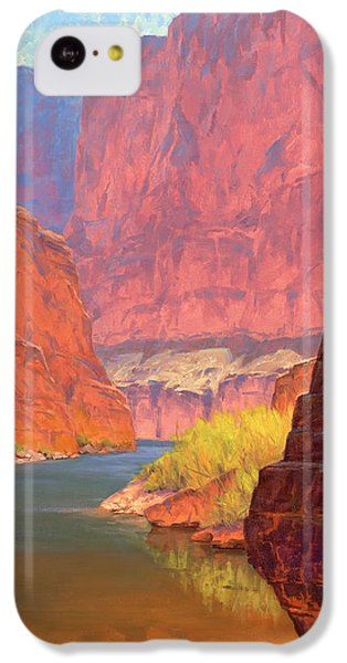Grand Canyon iPhone 5c Case - Carving Castles by Cody DeLong