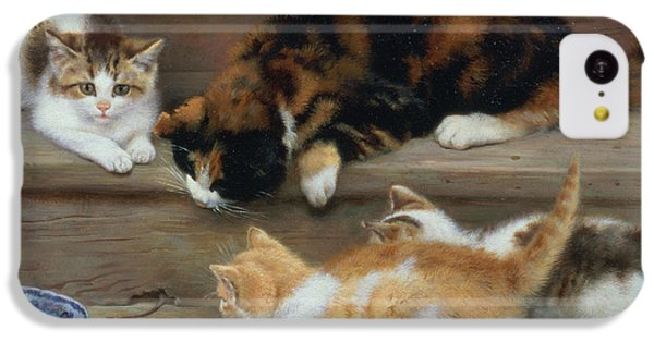 Cat And Kittens Chasing A Mouse   IPhone 5c Case by Rosa Jameson