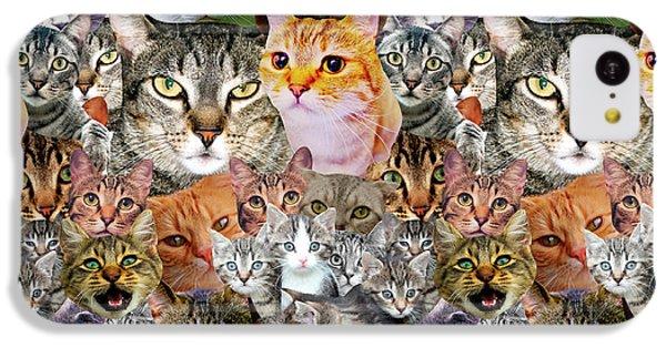 Cats IPhone 5c Case